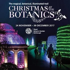 Christmas at The Botanics
