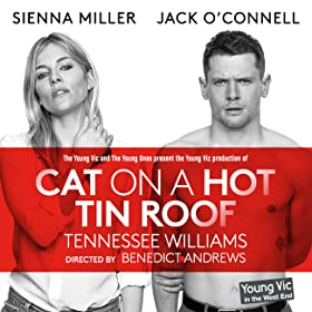 Cat on a Hot Tin Roof