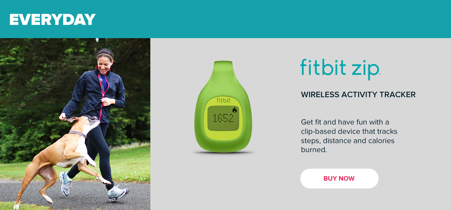 Everyday - Fitbit Zip