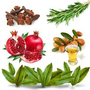 Oils that best treat fungal nail treatment