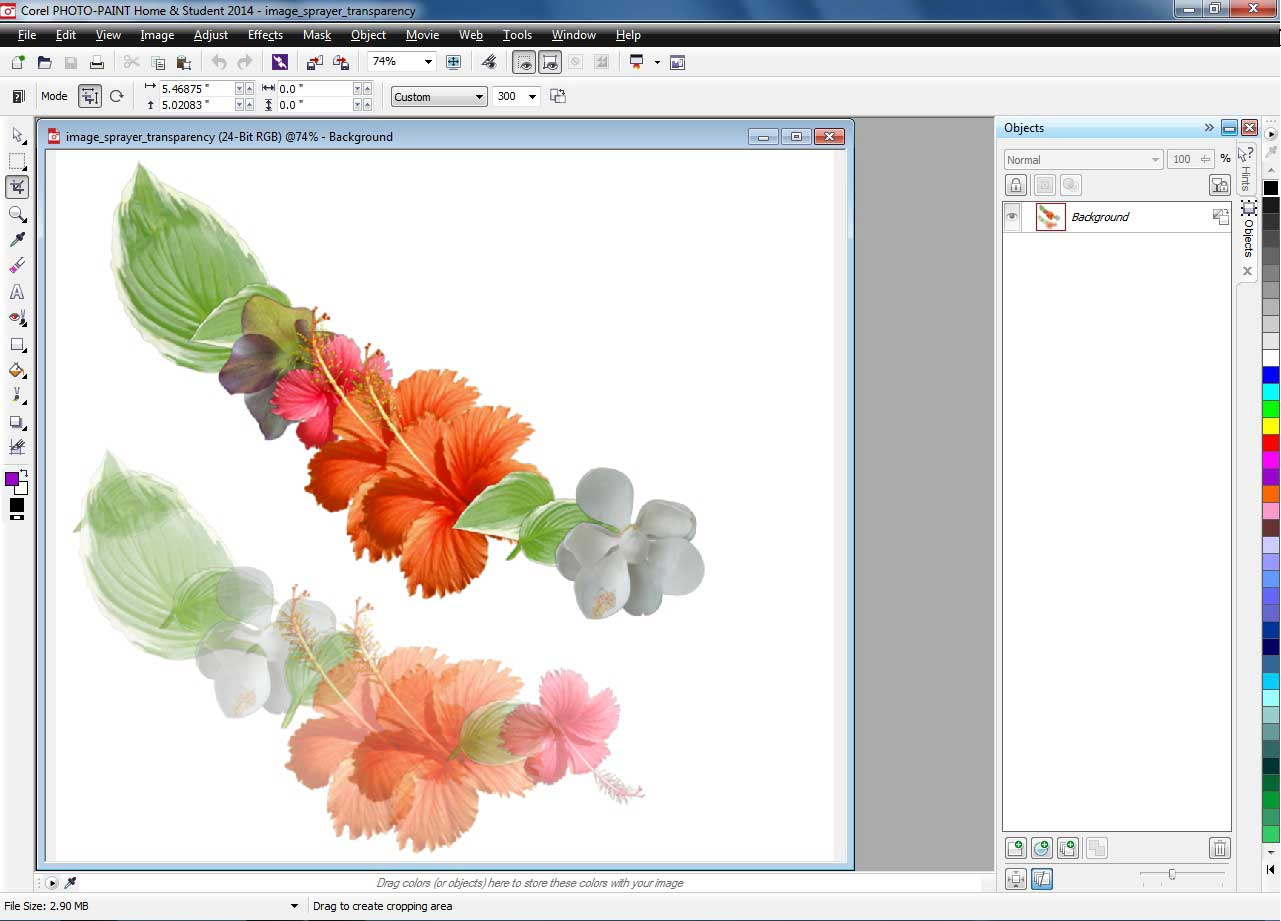 Corel draw version - Shape Tools