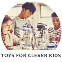 Toys for clever kids