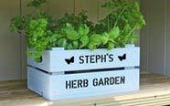 Planters & plant pots