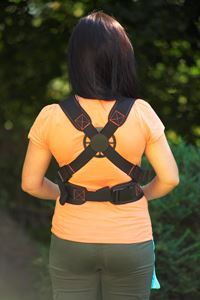 Image of carrier's back support for parent