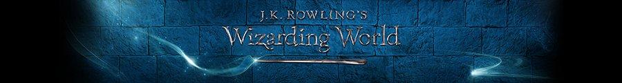 Wizarding World Store