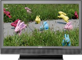 BRAVIA P3020 Series LCD TV