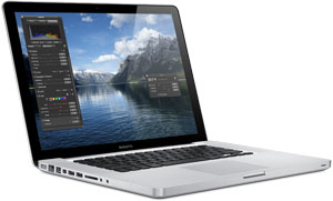 The 15-inch MacBook Pro uses the NVIDIA GeForce 330M integrated graphics processor