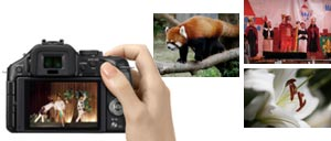 Using the electronic shutter completely eliminates AF and shutter noise