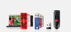 Style Flash Drives