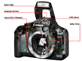 Canon's CMOS senser and DIGIC 4 processor combine perfectly in the EOS 500D