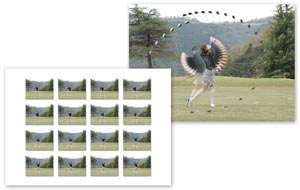 Merge Frames allows you to overlay multiple stills to give a sense of motion