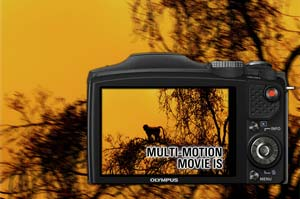 Multi-motion Movie IS