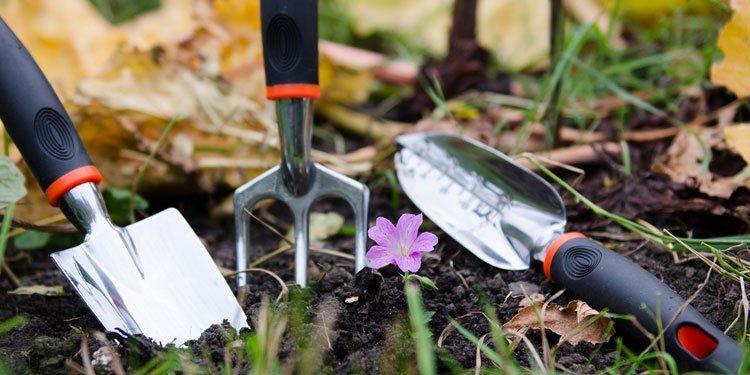 Garden outdoors for Home and garden equipment