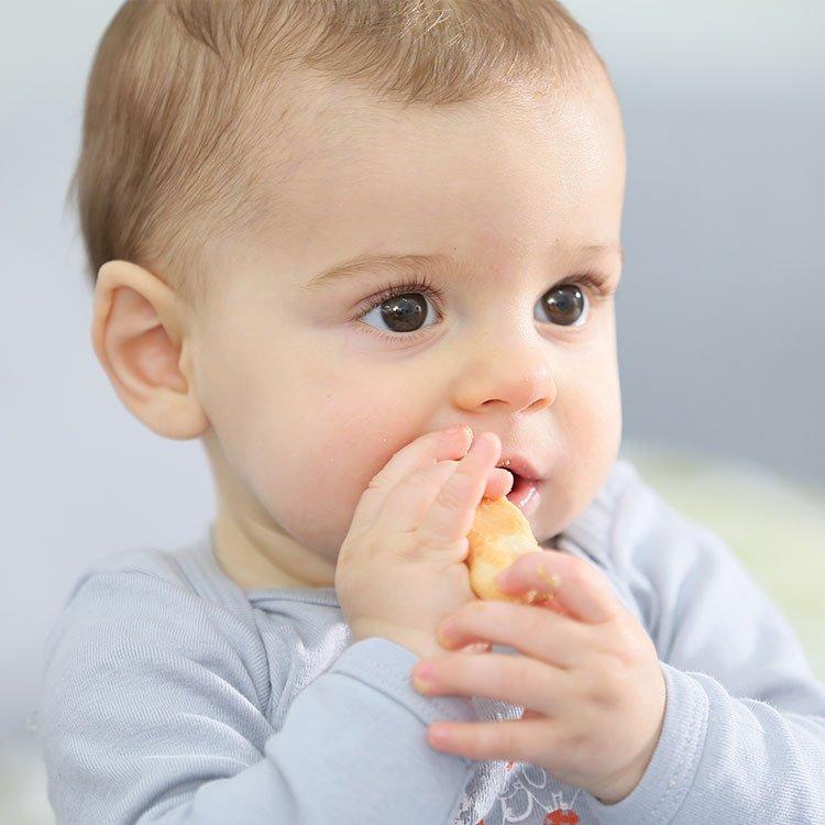 Finger Food & Snacks