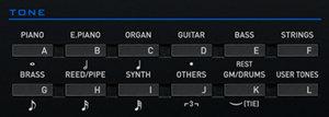 Casio CTK-6200 Voice Buttons