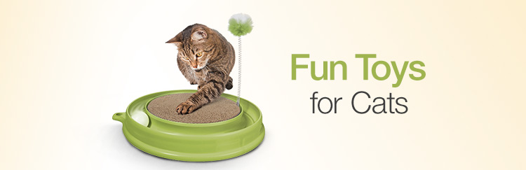 Fun Toys for Cats