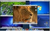 Parallels Desktop 8 for Mac showing multiple guest OS running side by side