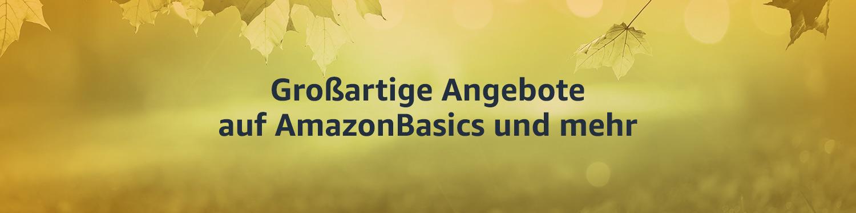 Angebote auf AmazonBasics und mehr