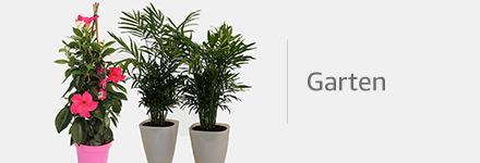 Produkte für den Garten aus den USA im Global Store