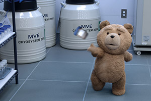 Ted 06