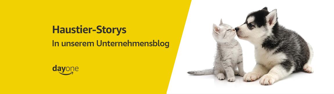 Haustier-Stories auf unserem Unternehmensblog: Day One