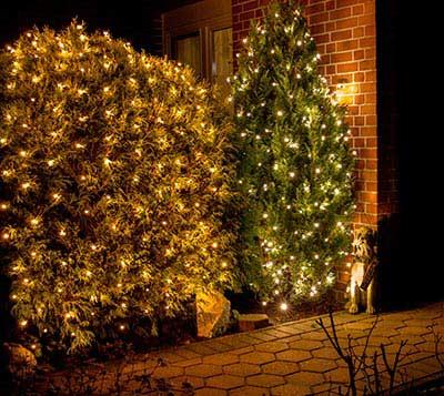 weihnachtsbaum lichterkette netz frohe weihnachten in europa. Black Bedroom Furniture Sets. Home Design Ideas