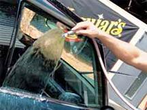 autopflege