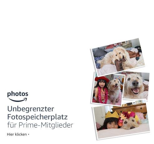 Verkleidungen Kostüme Für Hunde Amazonde Haustier