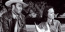 John Wayne Collection - Freunde im Sattel