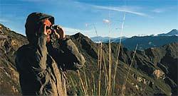 Steiner fernglas safari pro 8x22: amazon.de: kamera