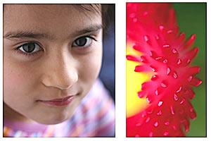 Portrait- und Makro-Fotografie