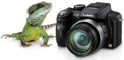 Bildverbesserung durch Bildprozessor und Intelligente Auflösung
