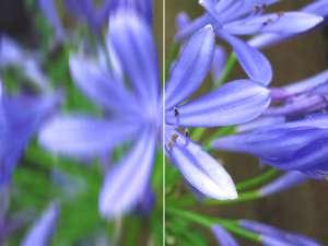 Intelligente Bildstabilisierung für gestochen scharfe Aufnahmen