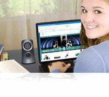 Z313 Multimedia Speaker