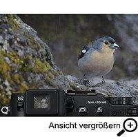 COOLPIX P7800 Sucher