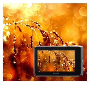 Detailreiche Fotos und Filme auch in Innenräumen oder bei Dämmerlicht aufnehmen