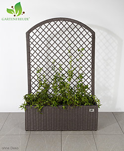 gartenfreude pflanzk bel pflanzgef e blumenk bel blumentopf f r blumen etc blumenk bel. Black Bedroom Furniture Sets. Home Design Ideas