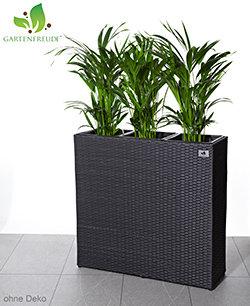 Gartenfreude pflanzkubel pflanzgefasse blumenkubel for Whirlpool garten mit moderne pflanzkübel innen