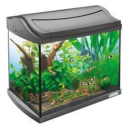 tetra 171855 aquaart shrimps aquarium komplett set 20 l ideal f r die haltung und zucht von. Black Bedroom Furniture Sets. Home Design Ideas