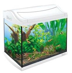 AquaArt Shrimps Aquarium-Komplett-Set 20 L, ideal für die Haltung und Zucht von Garnelen, White Edition