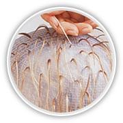 Haube strähnchen selber machen Strähnchen selber