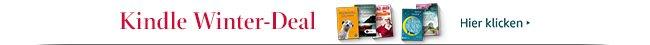 Winter Deal: Top-eBooks mindestens 50% reduziert