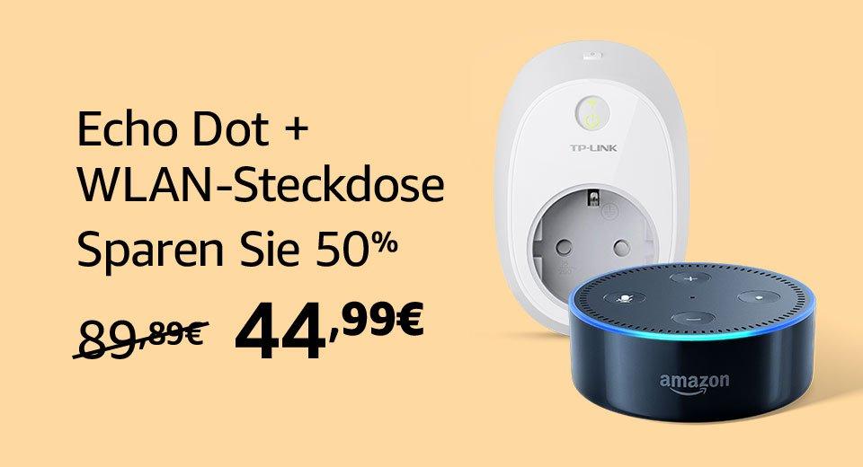 Echo Dot und TP Link
