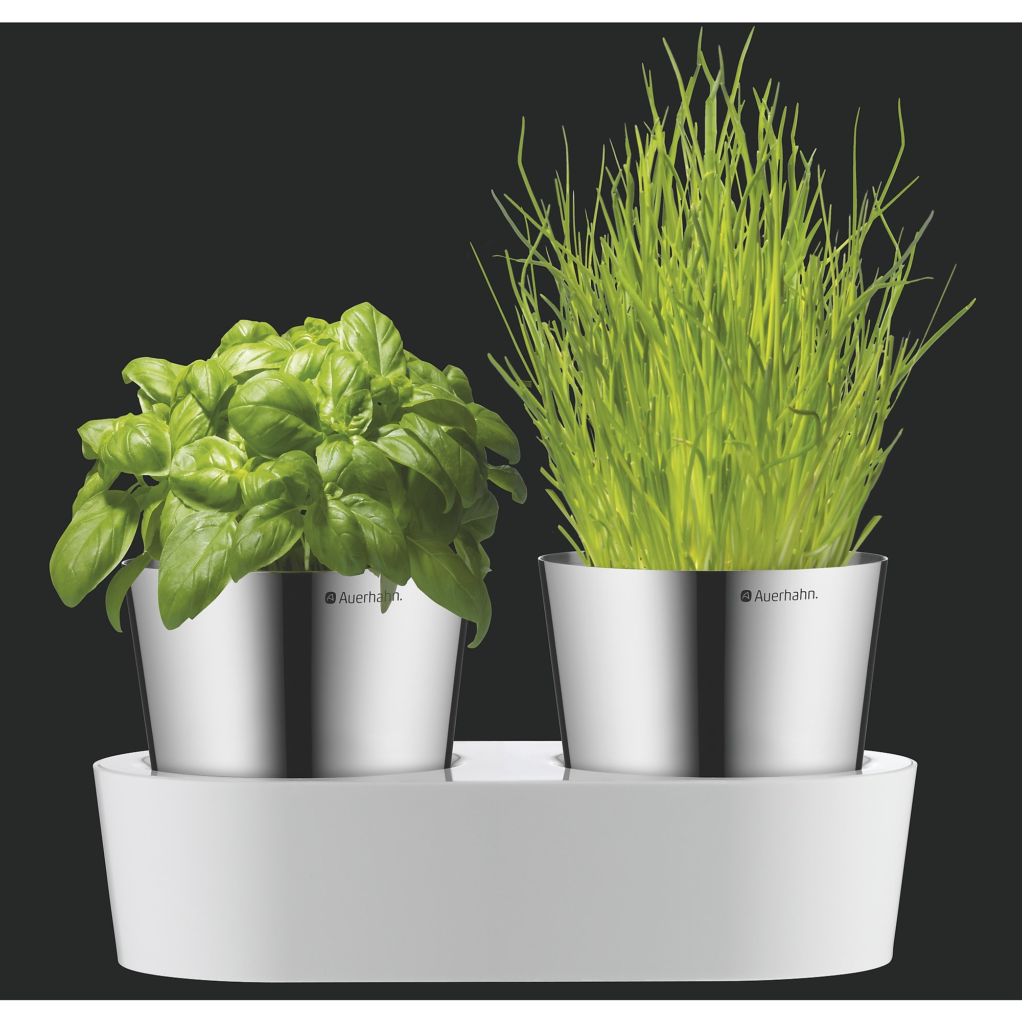 auerhahn 2430142520 herbs home kr utergarten 2 er set wei k che haushalt. Black Bedroom Furniture Sets. Home Design Ideas