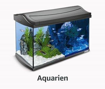 Aquarien