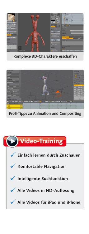 Höhepunkte des Video-Trainings