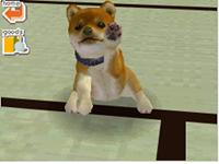 Nintendogs: Chihuahua & Friends