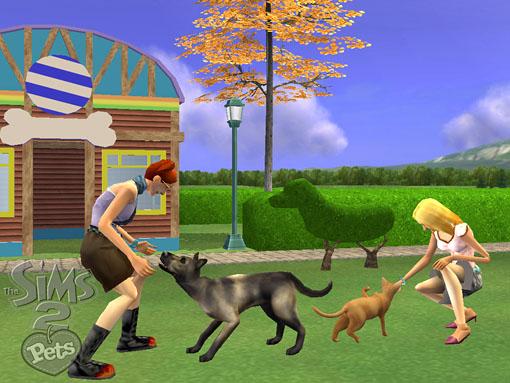 Sims  Dog Agility