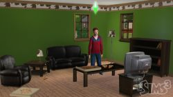 Die Sims 3