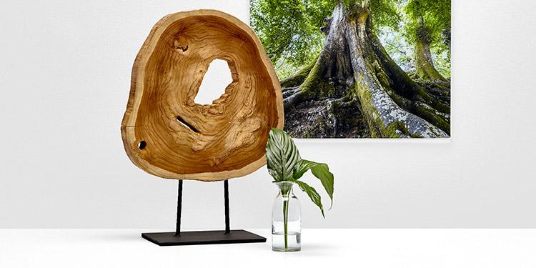 d coration de la maison. Black Bedroom Furniture Sets. Home Design Ideas